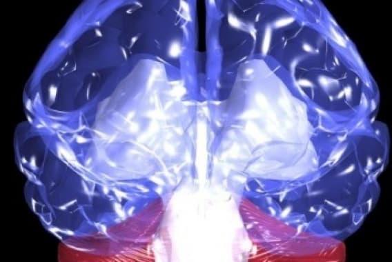 En quoi la drogue modifie-t-elle le fonctionnement du cerveau?